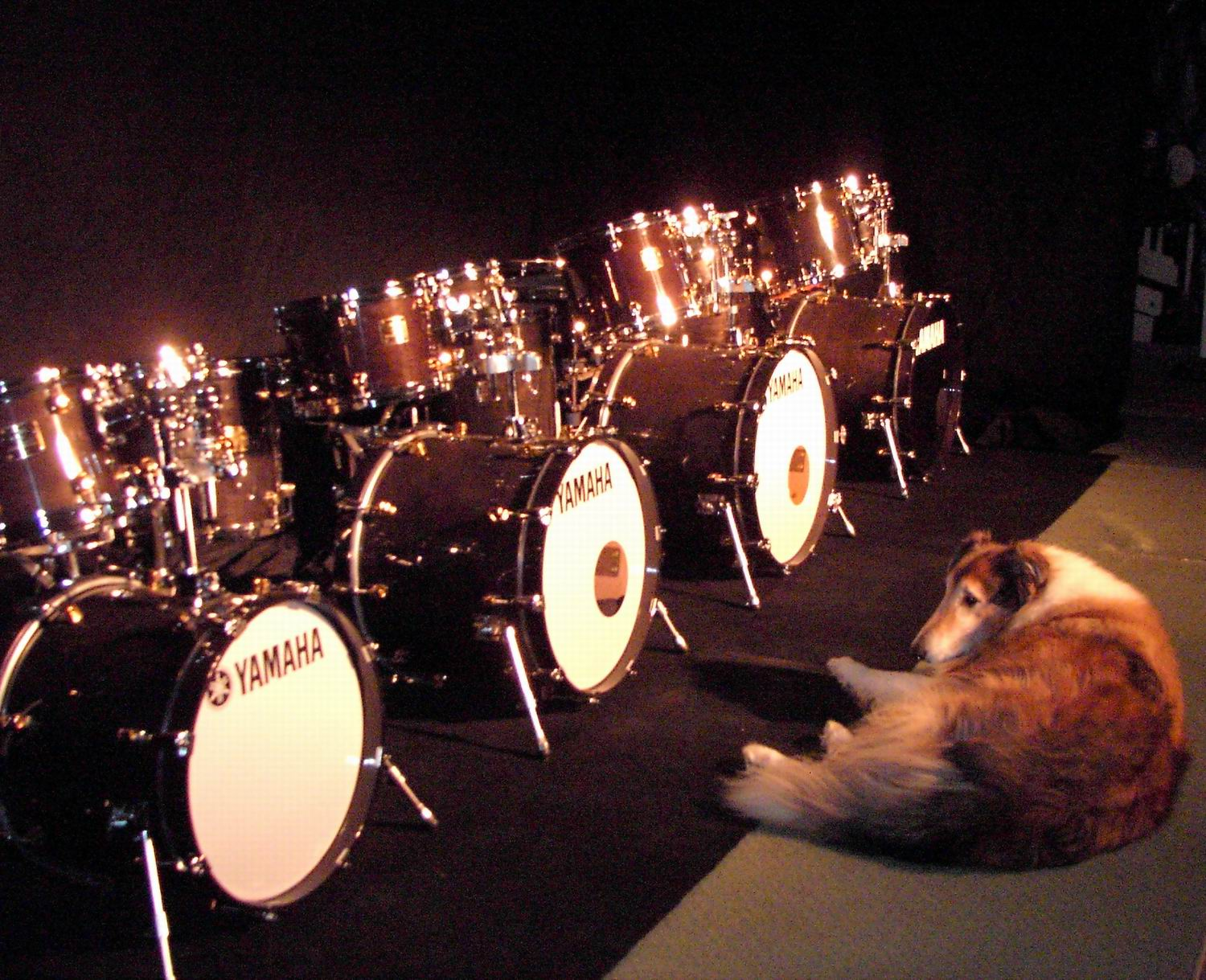 Intellasound / Herc with his Yamaha kits